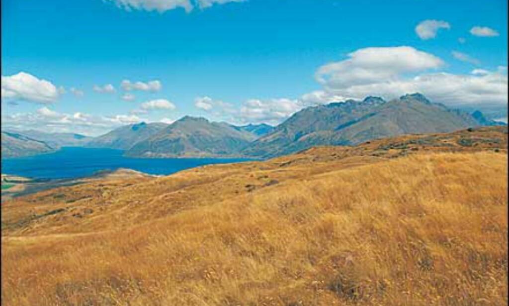 Foto: Ian Brodie/Tourism New Zealand Foto: Ian Brodie/Tourism New Zealand