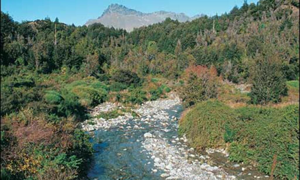 Foto: Ian Brodie/Tourism New Zealand
