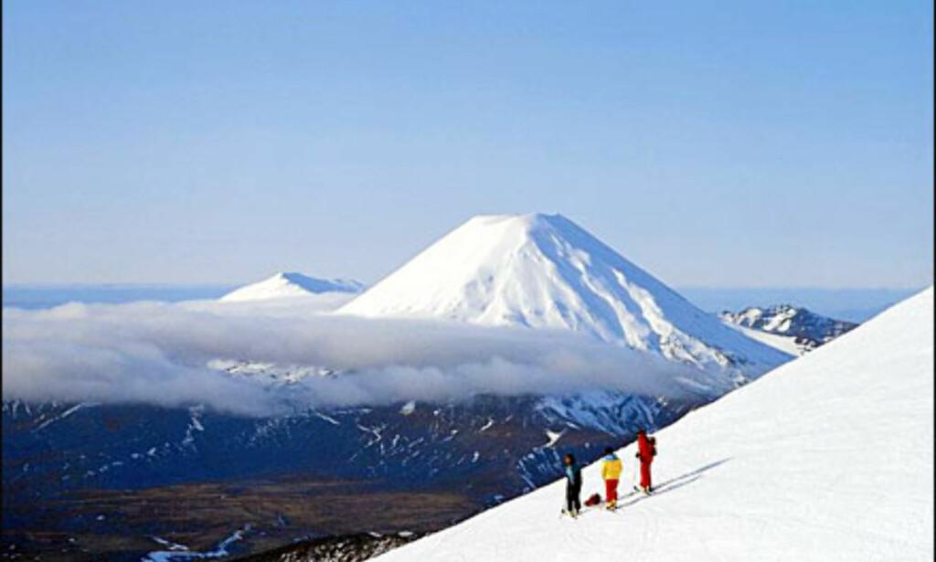 Foto: Det newzealandske turistkontor Foto: Foto: Det newzealandske turistkontor