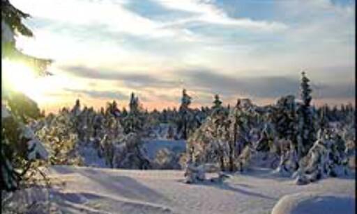 Soloppgang over nysnøen. Bilde: Lars Halmrast Foto: Lars Halmrast