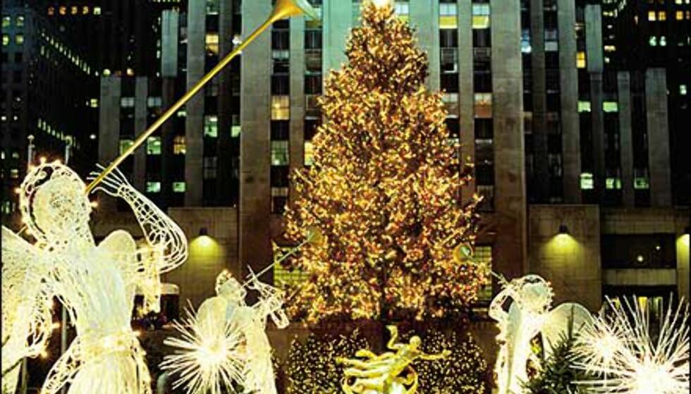 "Verdens mest berømte juletre glimrer i tusenvis av lys. <I>Bilde: <A TARGET=""_blank"" HREF=""http://www.nycvisit.com<br /> "">Copyright Bart Barlow/NYC & Company, Inc.</A></I>"