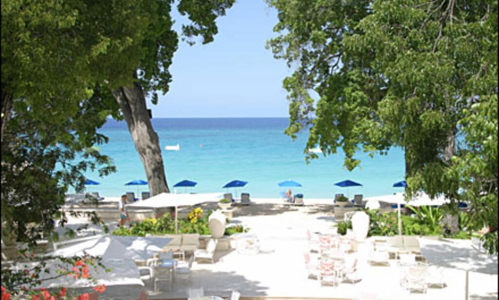 Egen strand hører til hotellet.