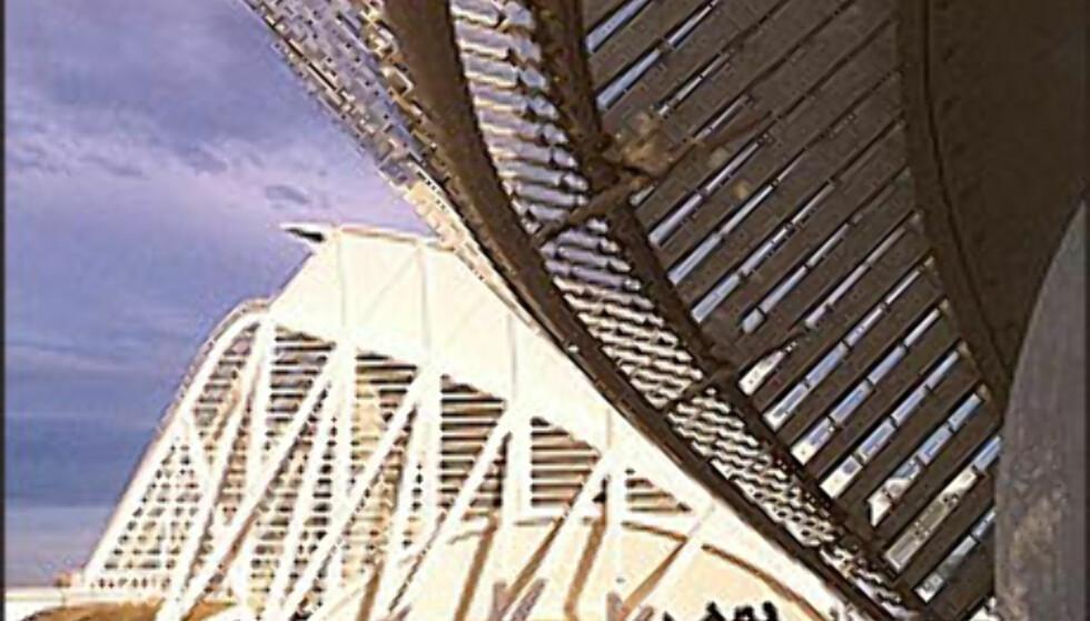Ta turen innom Ciudad de las artes y las cinecias - Kunst- og vitenskapsmuseet.  Foto: www.cac.es Foto: cac valencia