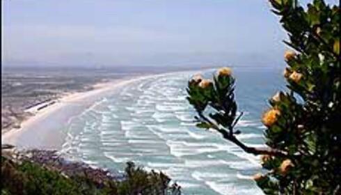 False bay ligger kun ett par mil fra sentrum av Cape Town.