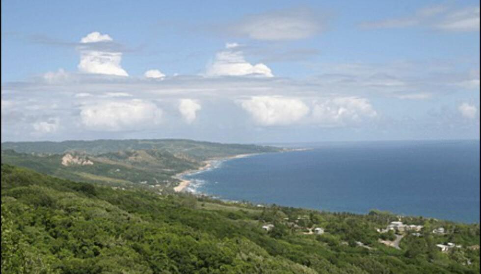 Barbados' vindblåste østkyst. (Foto: Dag Yngve Dahle).