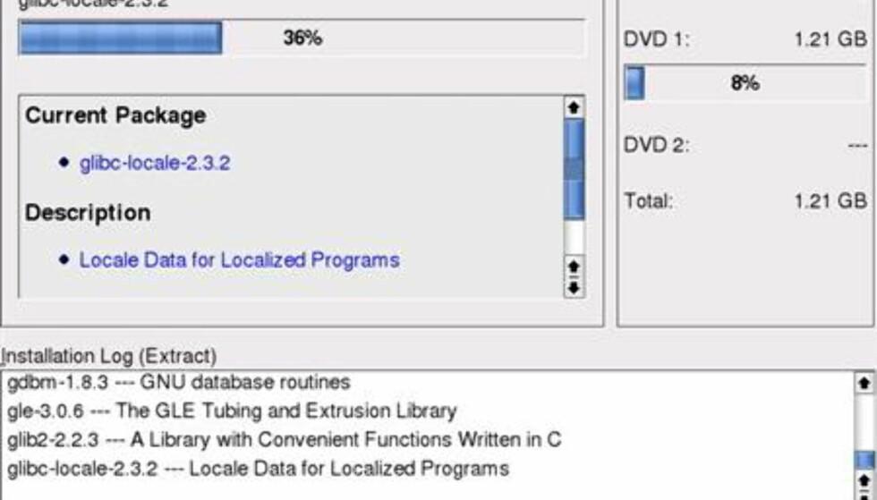 Vi brukte installasjons-DVDen istedenfor CDene, for å slippe å bytte CD under prosessen. Ved å bruke anbefalte pakker, slapp vi å dessuten å snu DVD-platen.