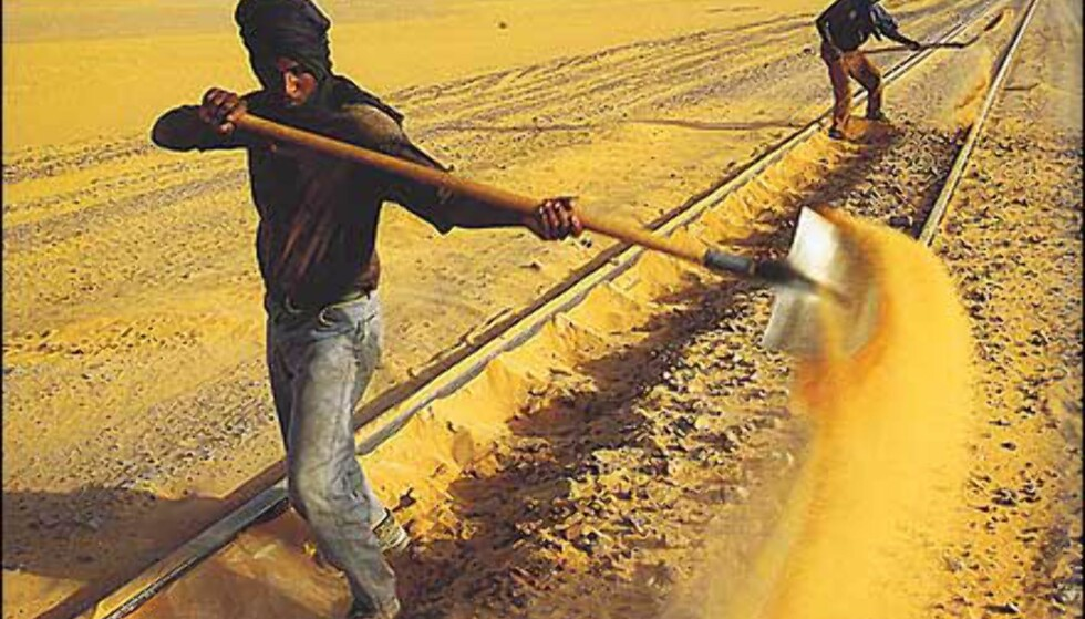 Skinnemåking er en evig jobb i sandfylte Mauretania. Faksimile fra boka. Gjengitt med tillatelse fra Orion forlag.