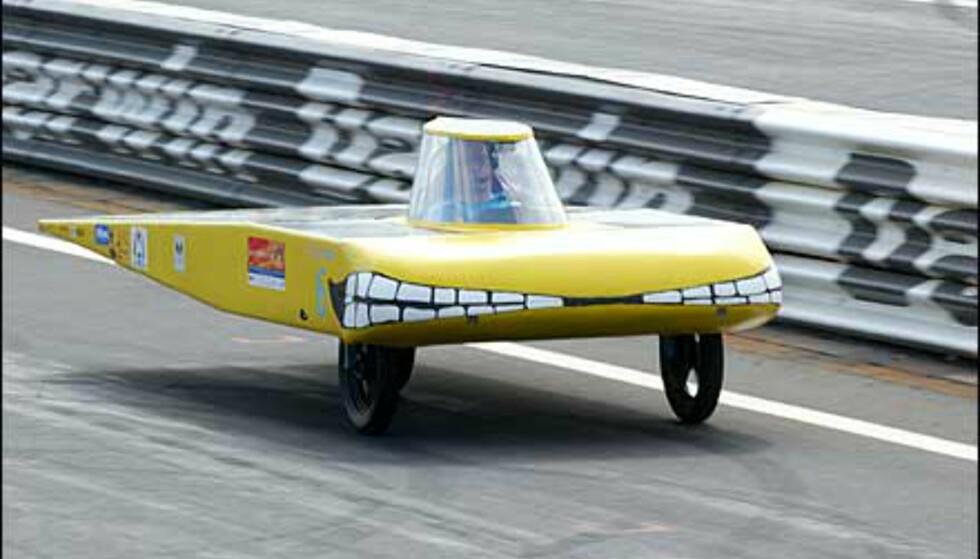 Gladgul med hissig front. Sungroper kalles denne doningen. Foto: Foto: David Hancock/World Solar Races
