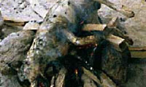 Hund på bålet - hundekjøtt spises flere steder i Asia. Foto: Øyvind Paulsen Foto: Øyvind Paulsen