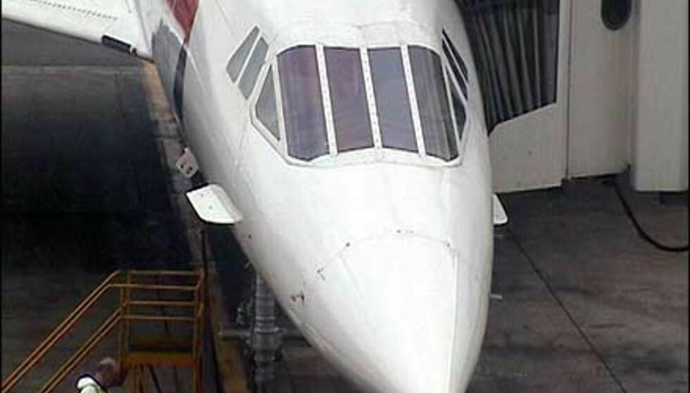 Concordes karakteristiske spisse snute. Foto: Pål Sigurd Anthonsen