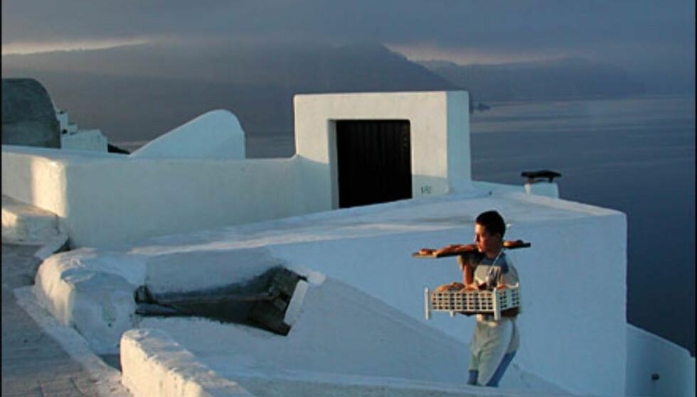 Bakersvenn i morgenlys på Oia, Santorini. Foto: Tor Tjeransen Foto: Tor Tjeransen