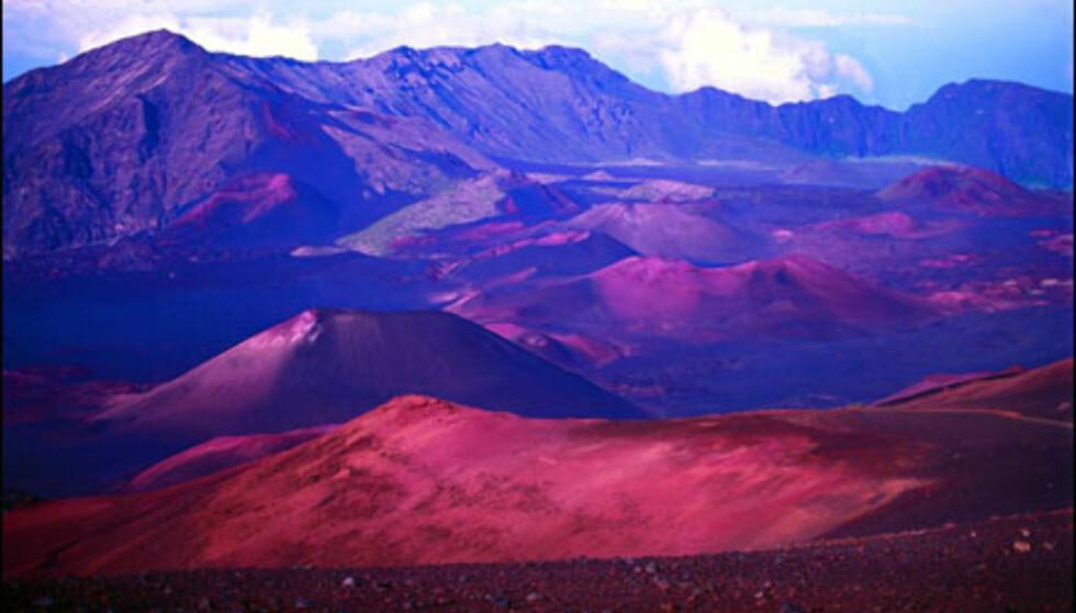 Maui, Haleakala-krateret. Foto: HVCB/Ron Dahlquist  Foto: HVCB/Ron Dahlquist