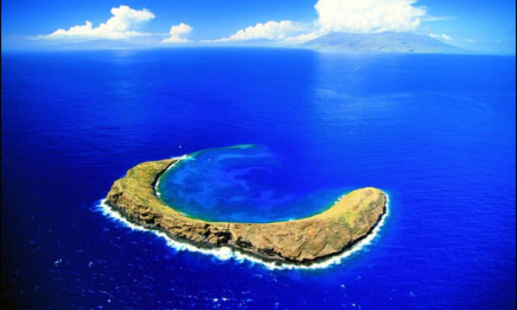 Maui, Molokini Island. Foto: HVCB/Ron Dahlquist Foto: HVCB/Ron Dahlquist