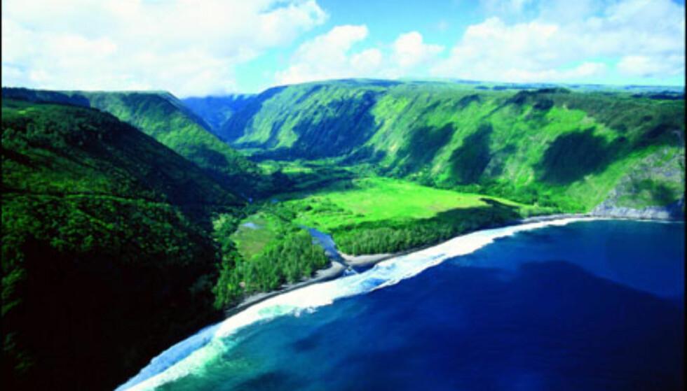 Waipio Valley, Hawaii. Foto: HVCB/Kirk Lee Aeder  Foto: HVCB/Kirk Lee Aeder