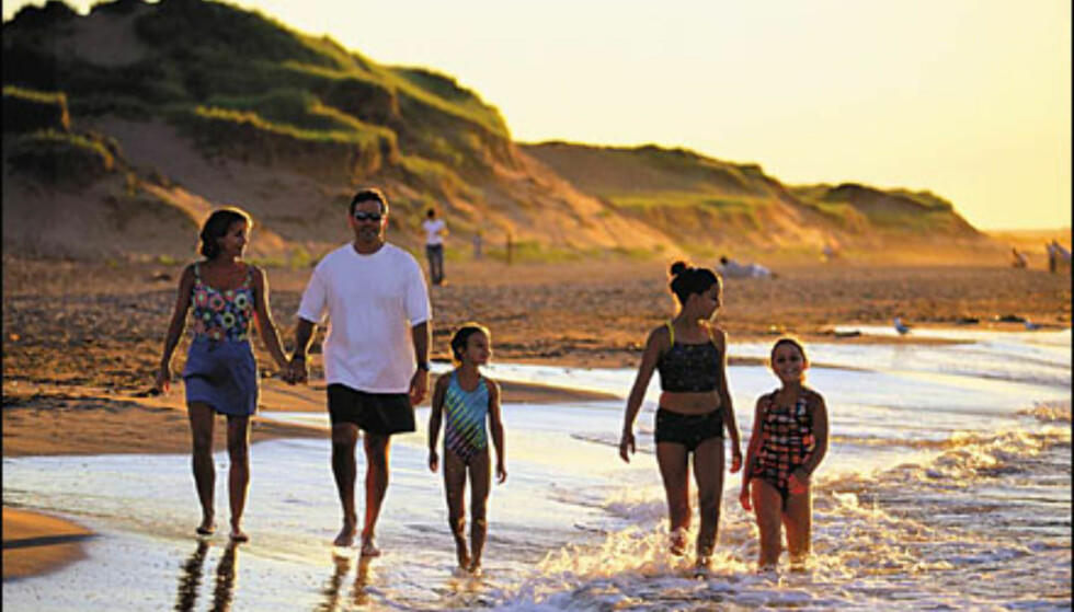 Brackley Beach, Prince Edward Island National Park. Foto: Tourism PEI/John Sylvester Foto: Tourism PEI/John Sylvester