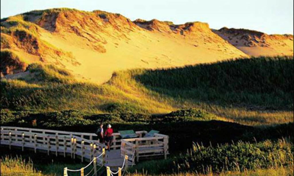 Greenwich National Park ligger på Prince Edward Islands nordøstre kyst. Foto: Tourism PEI/John Sylvester Foto: Tourism PEI/John Sylvester