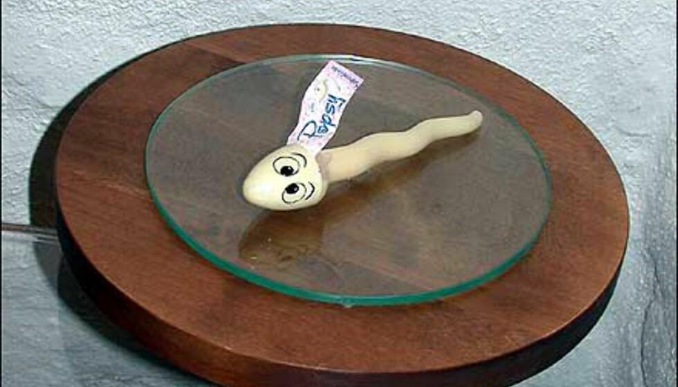 Hver måned kåres en harryflaske, som hentes opp fra lagrene. Denne måneden er det sædcelleflasken Popsy som har fått hederstittelen.