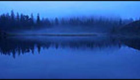 Blått fiskevann av Ørjan Moe er leserfavoritt. Foto: Ørjan Moe