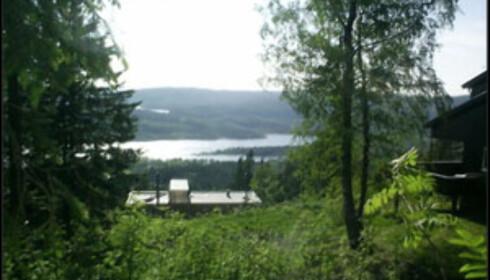 God utsikt fra tomta i Jerpefaret 27b i Holmenkollen.