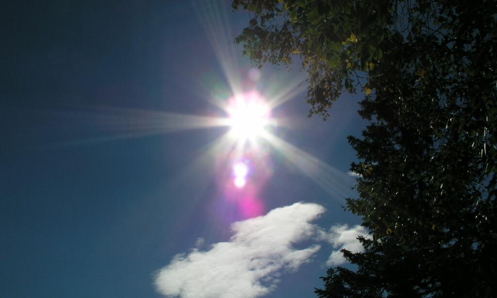image: Se bilder tatt med kameraet