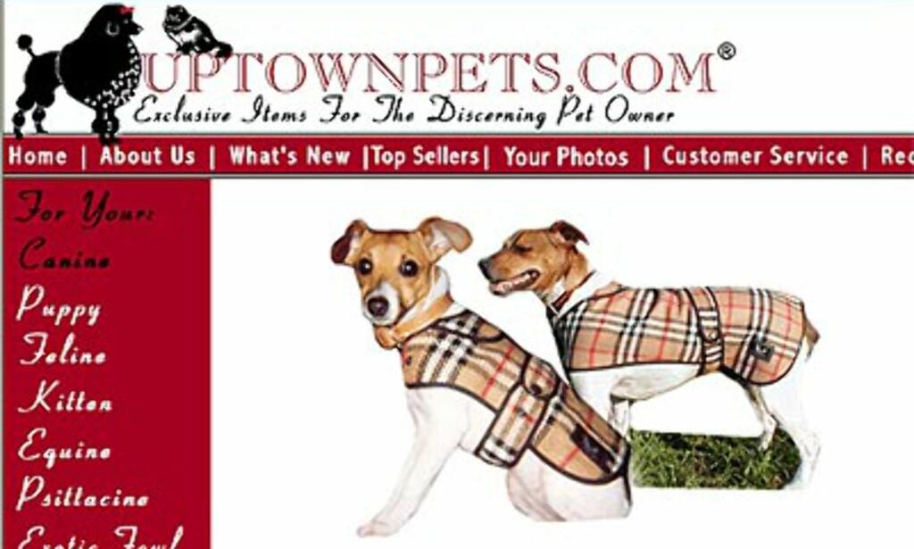 Burberry kappe: Uptownpets.com. Priser fra 55 til 155 dollar avhengig av størrelse.