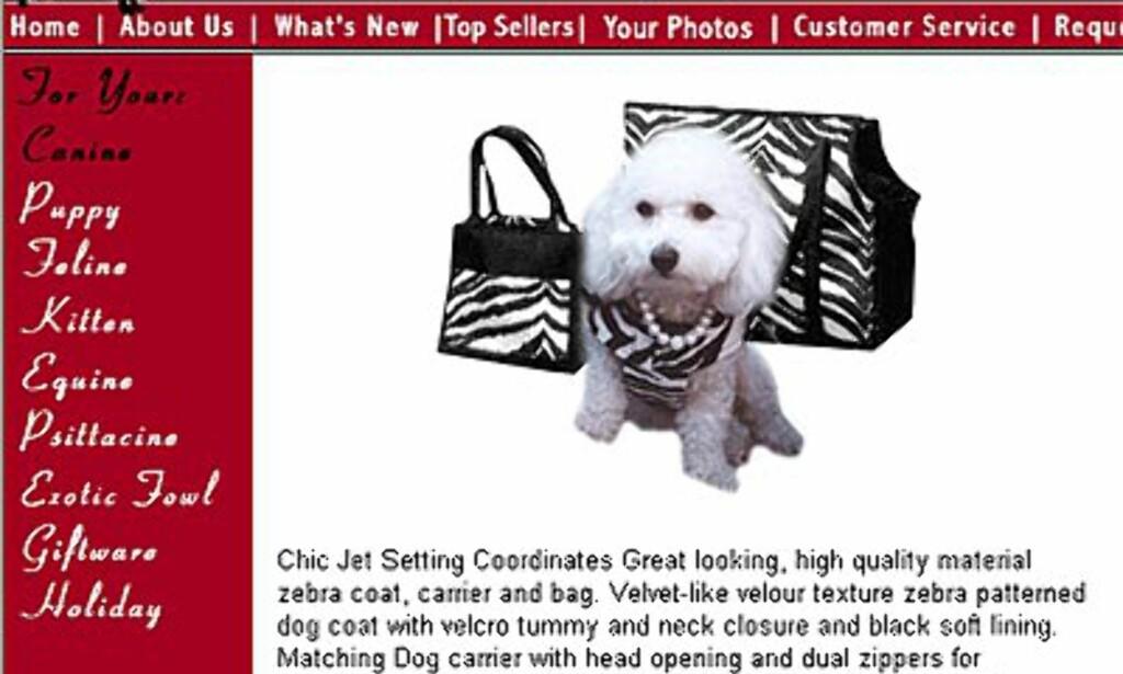 Chic Jet Set, inkludert håndveske til fruen, drakt til hunden, og en praktisk hundebæreveske. Alt i Zebrastil – selvfølgelig. Uptownpets.com Bagen koster 50 dollar, bærevesken 135, og dressen ligger på mellom 45 og 50 dollar avhengig av størrelse.