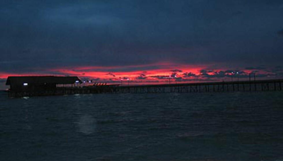 Bryggen i solnedgang