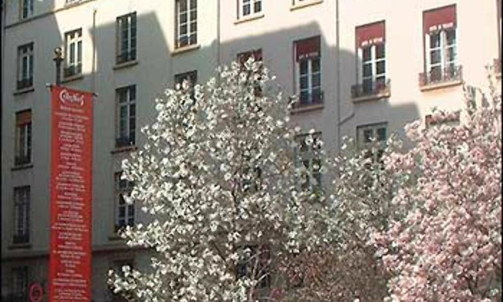 Lyon er full av små, grønne plasser Foto: Stine Okkelmo