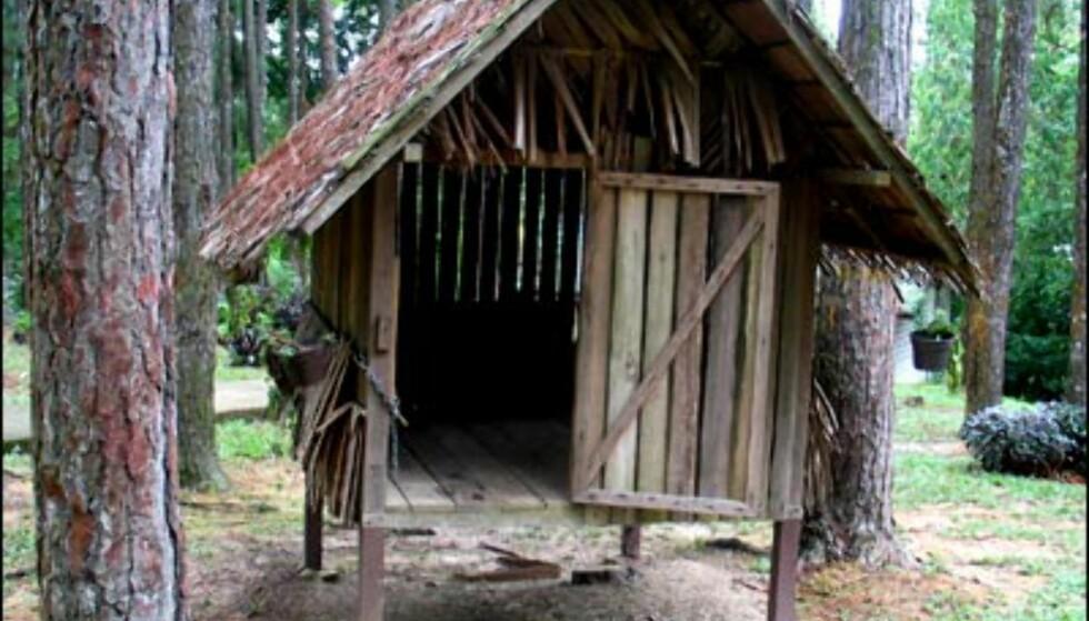 Slik bodde fangene i krigsfangeleiren. Mellom fire og seks mennesker sov her samtidig. Hyttene er cirka 180 cm lange, og 160 cm brede. Med den høye temperaturen og den ekstremt høye luftfuktigheten, må det ha vært et mareritt av dimensjoner.