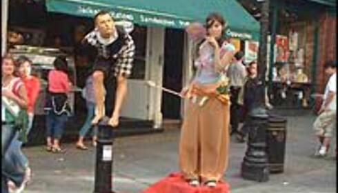 Pussige gatekunstnere i Covent Garden. Foto: Stine Okkelmo