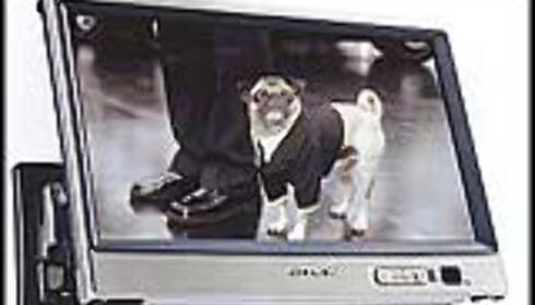 Lekre TVer til bilen