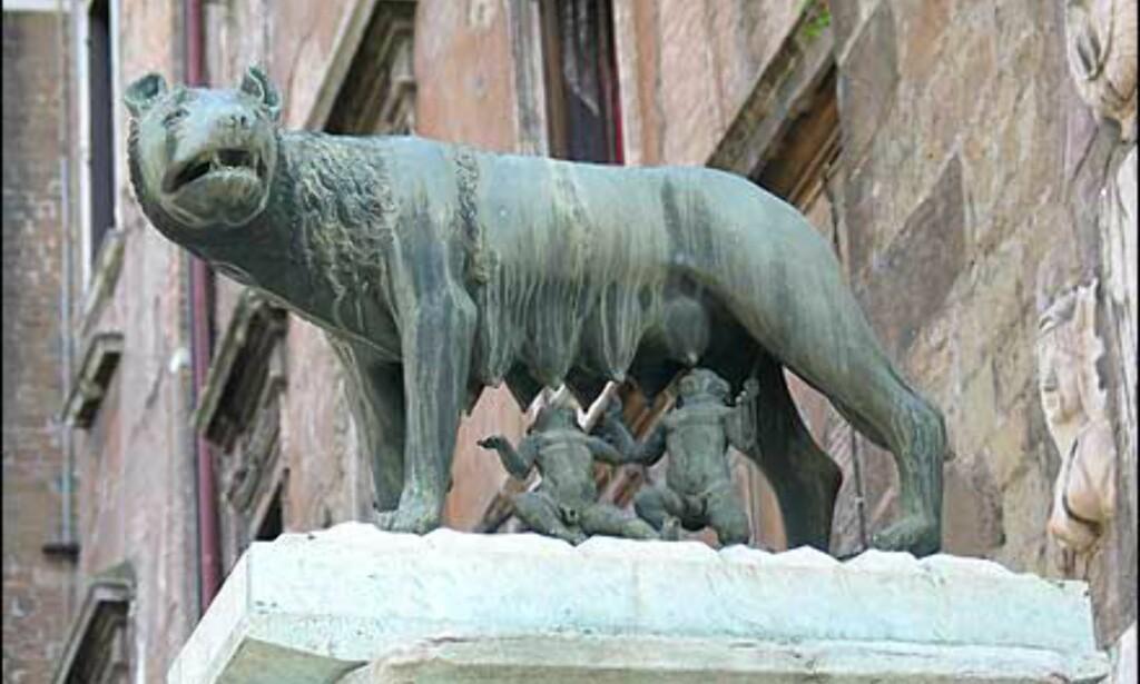 Myten om Romas opprinnelse sier at to tvillinggutter - sønner av guden Mars - ble satt ut på Tibern og funnet av en ulvinne som foret dem opp. Guttene Romulus og Remus fikk senere vite av sin gudefar at det var deres skjebne å grunnlegge en by, og ifølge legenden skjedde det i år 753 f.Kr. De ble imidlertid ikke enige, og det endte med at Remus ble drept av sin bror. Over hele byen vil du se statuer og avbildninger som viser ulvinnen og de to guttebarna.
