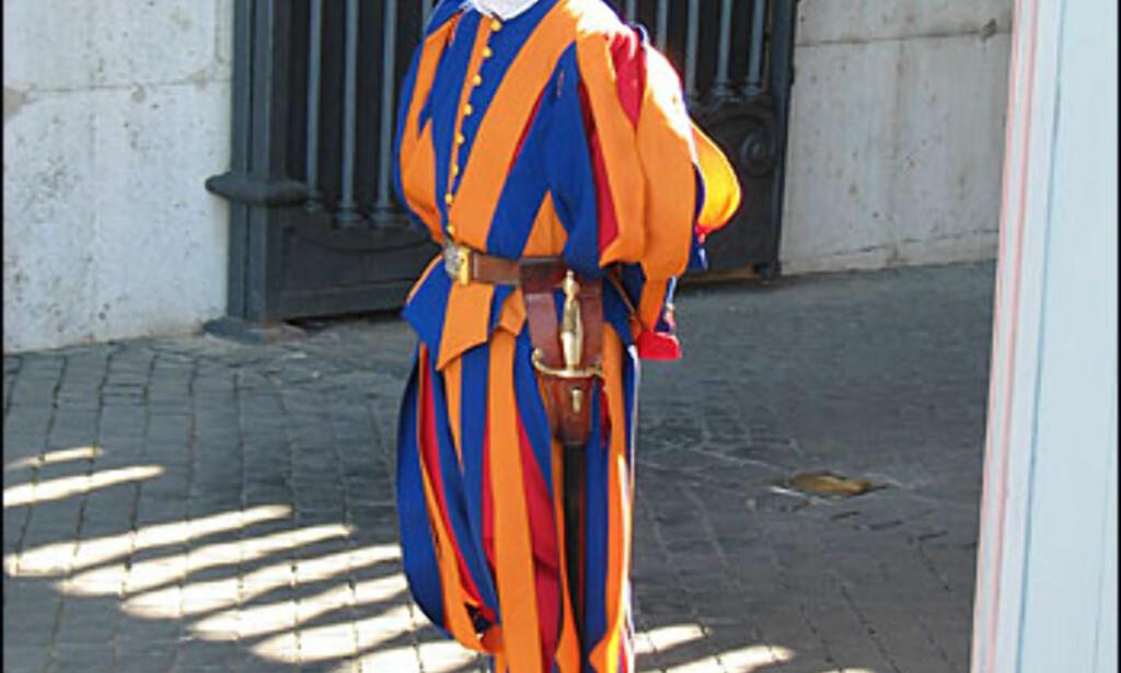 Verdens minste uavhengige stat, Vatikanet, voktes av garden i fargerike uniformer. De fleste av bygningene er stengt for publikum, med unntak av Peterskirken, Vatikanmuseet og deler av Vatikanhagene (for den som bestiller på forhånd).