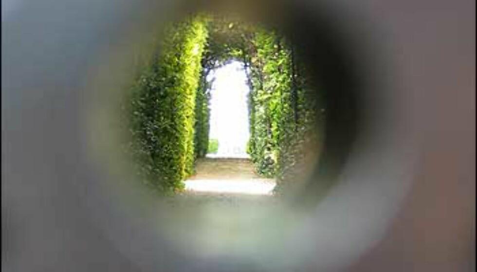 Titt inn gjennom nøkkelhullet, og du vil se en hemmelig hage med en allé av trær.