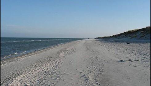 Lang og barnevennlig strand i Sønderklit.