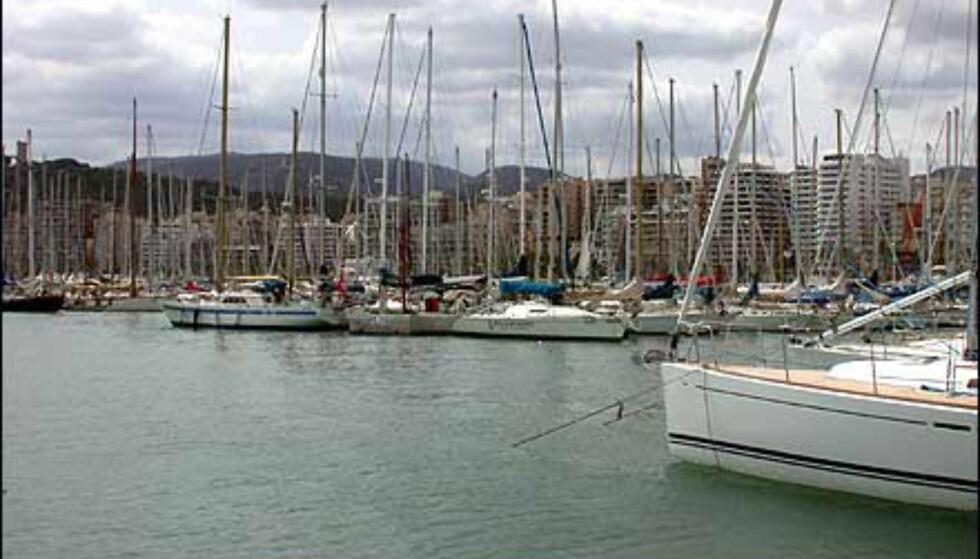 Palmas havneområde er plass for enorme mengder gedigne båter. Også vår egen konges FRAM, lå i tørrdokk der under vårt opphold. Mallorcas egne innbyggere sliter forøvrig med å få båtplasser - det er så dyrt, og så mange om plassene at en vanlig mallorcenser ikke har mulighet.