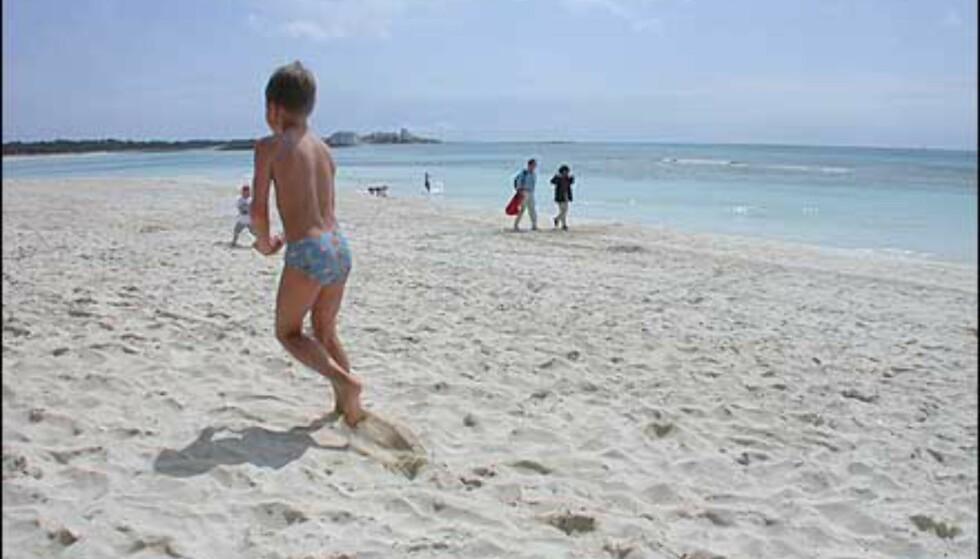Des Trenc er den største stranden på øya som naturforkjempere har fått gjennomslag for at skal holdes fri for hotellutbygging. Tre og en halv kilometer med fin sand kun omgitt av hav, sandhauger og skog.
