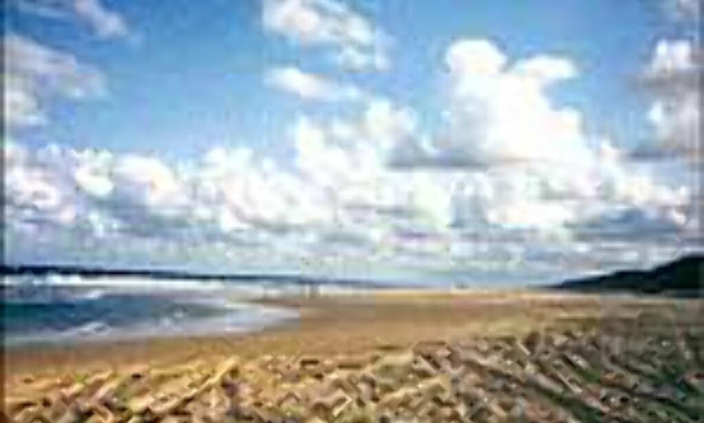 75 mile beach er med, midt på lista. Australias, og verdens største sandøy, Fraser Island, er stedet du finner denne uberørte men høytrafikkerte perlen. <I>Foto: Andersen/Hassel-Bergerud</I> Foto: Andersen/Hassel-Bergerud