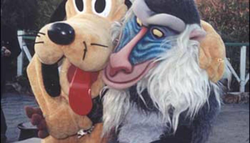 Disneyfigurene dukker opp med jevne mellomrom for å la seg fotografere. Foto: Stine Okkelmo