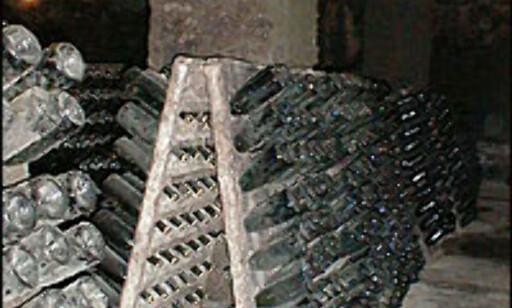 Fremtidig cava til lagring i pupitros i Freixenets kjeller. Foto: Inga Ragnhild Holst Foto: Inga Ragnhild Holst