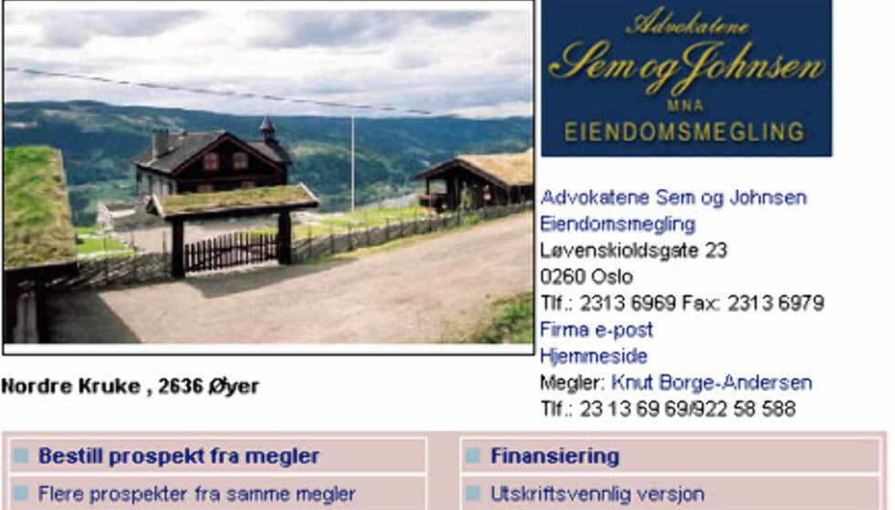 Nok plass til alle påskegjestene: Hyttetun på Hafjell til ikke mindre enn 13 millioner kroner. Faksimile fra www.tinde.no