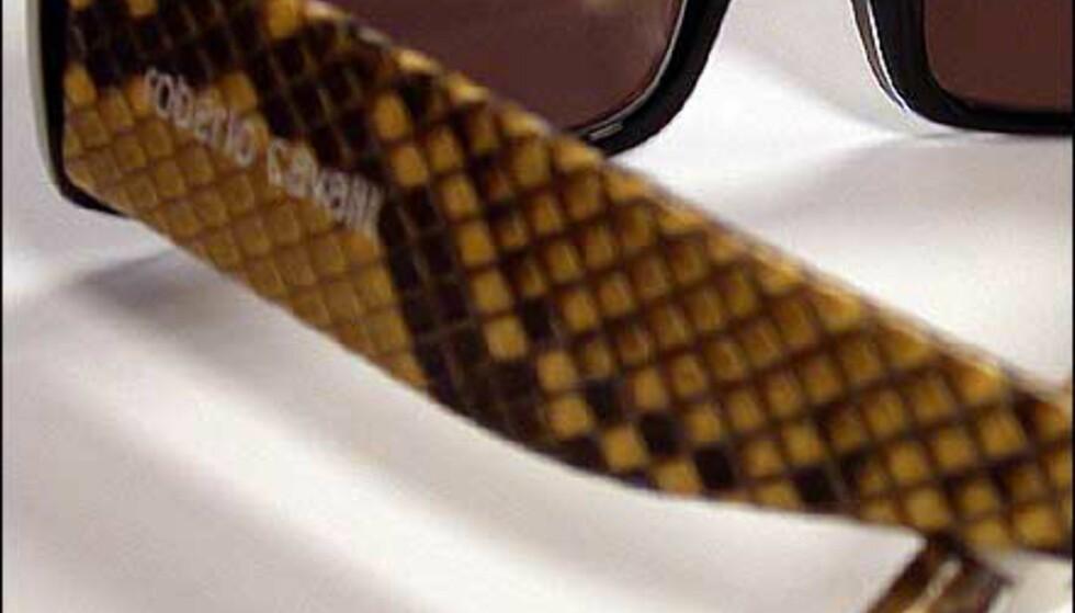 Fjorårsmodell som fortsatt gjør lykke? Slangeskinnsdekor gjør disse brillene fra Roberto Cavalli til noe utenom det vanlige.  Butikk: Interoptik, Vika