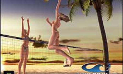 image: DOA Xtreme Beach Volleyball