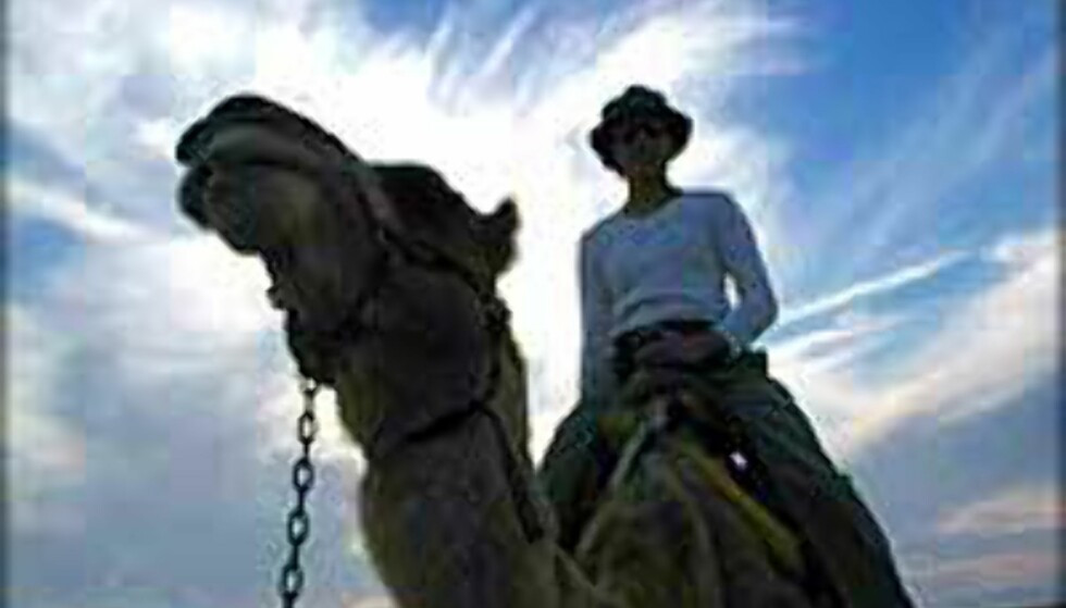 Turist på kameltur i Israel for ett par år siden. Tidene har forandret seg ... <I>Foto: Ken Hansen</I> Foto: Ken Hansen