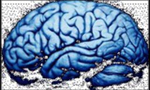 image: Har du høy eller lav IQ?
