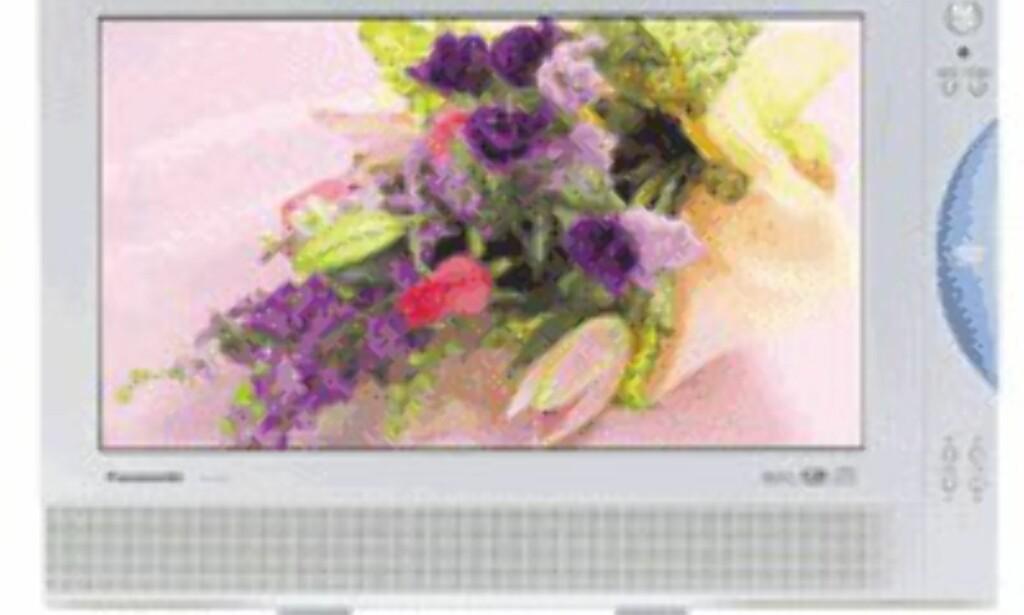 Innebygget DVD i denne modellen fra Panasonic (15 tommer).