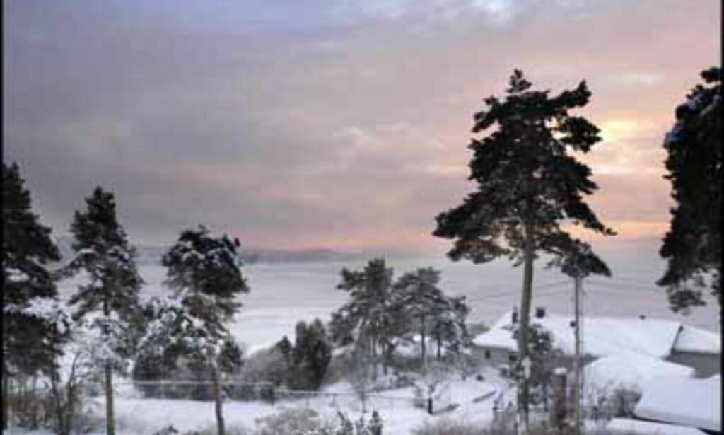 Vakker panoramautsikt fra Ulvøya til 11,5 millioner (Eiendomsmegler 1).