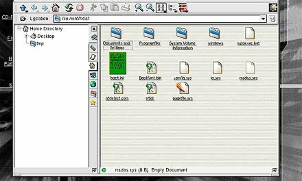 Partisjoner på harddisken monteres automatisk. Det betyr at du kan få leseadgang til NTFS-partisjoner, og full skrive/lesetilgang til FAT og FAT32-partisjoner. Nyttig dersom du ønsker å ta vare på dokumenter og lignende som du produserer i Knoppix, men også nyttig for å få tilgang til dataene på disken for eksempel dersom du ikke får startet Windows etter krasj.
