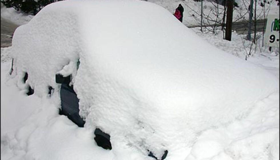 NEDSNØDD: Eieren av denne bilen er åpenbart lei av å måke og har bestemt seg for å vente på bedre tider.