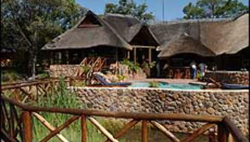 Matswani Safari Lodge Foto: Store Verden Foto: Store Verden DK